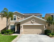 12514 Bay Branch Court, Tampa image