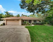 2460 Reed Ellis Road, Osteen image