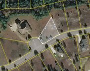 1032 Wigeon Dr., Conway image