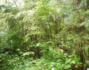 Lot# 36 Red Cedar Lane, Sevierville image