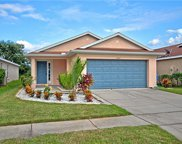 11217 Cocoa Beach Drive, Riverview image
