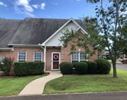 7101 Fernvale Springs Ct, Fairview image