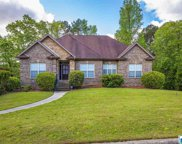 6223 Mountain Ct, Trussville image