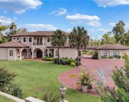 17648 County Road 455, Montverde image