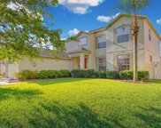 11335 Callaway Pond Drive, Riverview image
