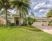 27535 Pine Point Drive, Wesley Chapel image