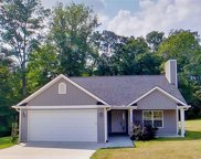 226 Shady Springs Way, Wellford image