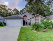 3373 Laurelwood Court, Tarpon Springs image