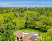 11467 Stoneville Court, Spring Hill image