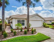 15707 Crystal Waters Drive, Wimauma image