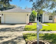 16603 Meadow Cove Street, Tampa image