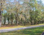 LOT 4 Rice Bluff Rd., Pawleys Island image