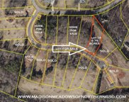 7106 Rae Farms Way, Greensboro image