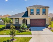 31480 Driscoll Drive, Wesley Chapel image