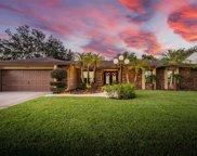 11706 Rolling Oaks Lane, Tampa image