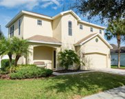10516 Shady Preserve Drive, Riverview image