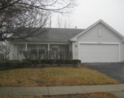 5517 West Orchard Trail, Monee image
