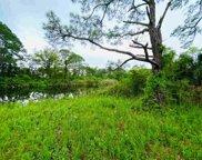 Harry Morrison Island, Alligator Point image