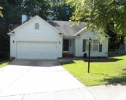1110 Mango Crest Drive, Knightdale image