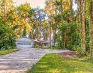 19515 Deer Lake Road, Lutz image