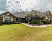 13875 Summerfield Drive, Athens image