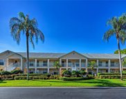 774 Wiggins Lake Dr Unit 106, Naples image