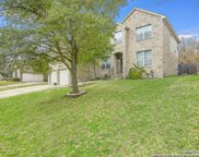 1007 Peg Oak, San Antonio image