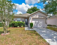 523 Scarlet Maple Court, Plant City image