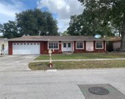 7509 Meadow Drive, Tampa image