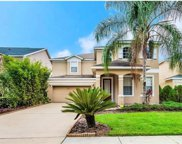 14526 Yellow Butterfly Road, Windermere image