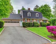 14 Pinetree Ln, Roslyn Heights image