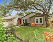 4419 Black Walnut Woods St, San Antonio image
