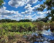 1002 Center Lake Burrell Drive, Lutz image