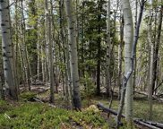 000 Hidden Wilderness Road, Idaho Springs image