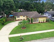 4412 Snapper Street, Tampa image