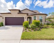 11617 Kilkenny Coral Drive, Riverview image