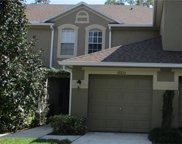 18834 Duquesne Drive, Tampa image