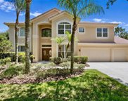 18105 Courtney Breeze Drive, Tampa image