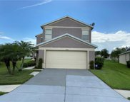11206 Cocoa Beach Drive, Riverview image