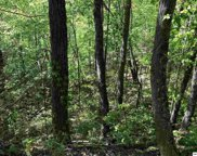 Lot 13 Black Oak Drive, Sevierville image
