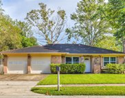 305 Mary Ann Drive, Friendswood image