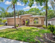 2129 Backwater Trail, Palm Harbor image