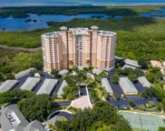 1001 Arbor Lake Dr Unit 106, Naples image