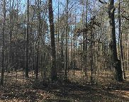 Lot 1 Waldron Ferry Estates, Hallsville image