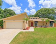 15303 Lazy Lake Place, Tampa image