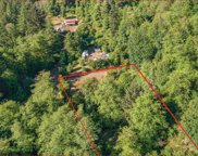 35315 Big Trout Rd, Hebo image