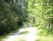 Little Creek, Scaly Mountain image