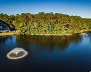 347 Hunters Oak Ct., Pawleys Island image