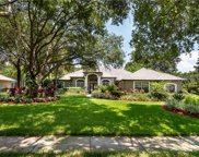 11380 Willow Gardens Drive, Windermere image