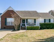 2902 Wills Ct, Spring Hill image